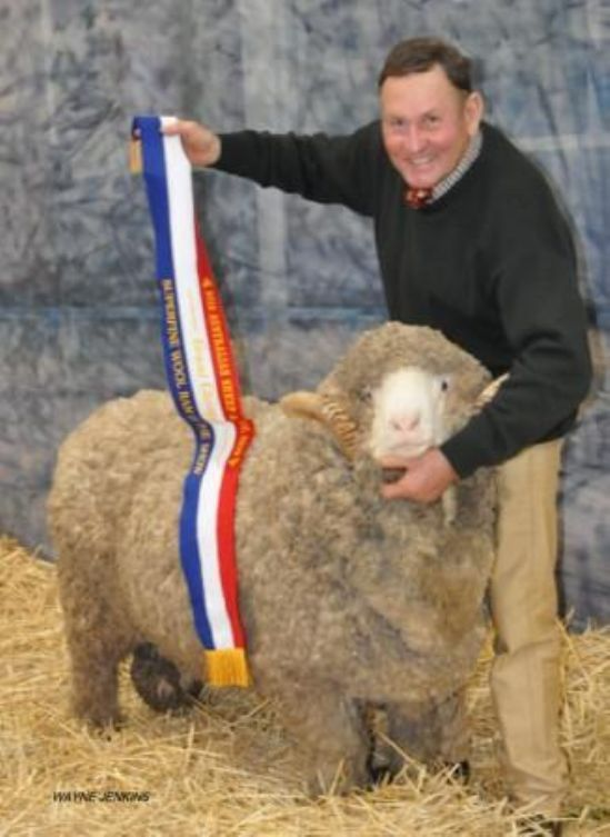 GEORGE MCKENZIE WITH HIS GRAND CHAMP SUPERFINE WOOL RAM.JPG